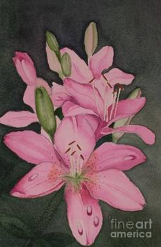 Lilies in Pink by Penny Stroening