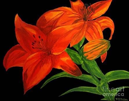 Vicki Maheu - Lilies of the Field