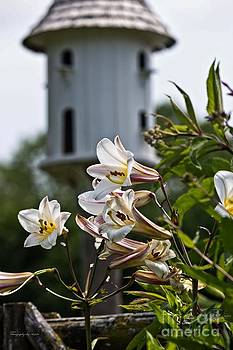 Lillies and Birdhouse by Ms Judi