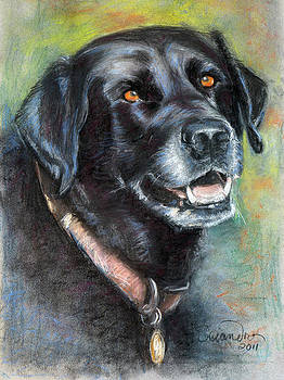 Lily- Black Labrador Retriever by Sciandra