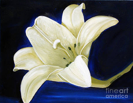 Lily for Lilly by Darlene Green