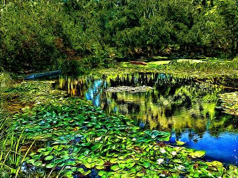 Lily Pond by Cary Shapiro