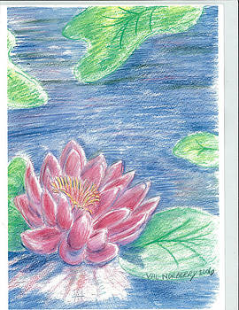 Lily pond by Valerie VanOrden