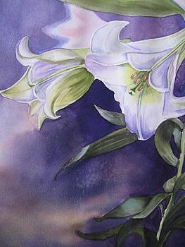 Lily by Stephanie Zobrist