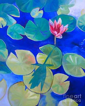 Lily's Shadow by Noel Sandino
