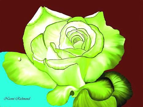 Naomi Richmond - Lime Rose