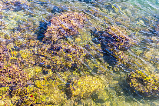 Limpid Waters 1 by Javier Luces