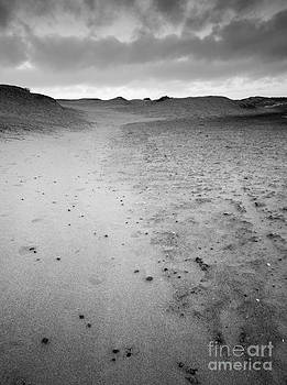 Line in The Sand by David Hanlon