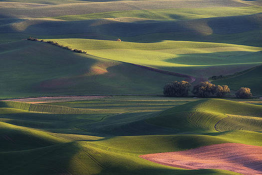 Lines and Shadows by Ryan Manuel
