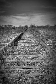 Bonnie Davidson - Lines of the Tracks