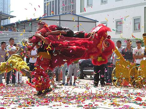 Alfred Ng - lion dance