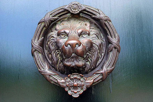 Lion Door by Kelly E Schultz