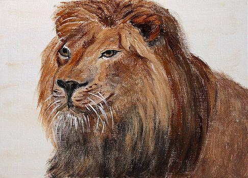 Lion by Elayne Doehrel