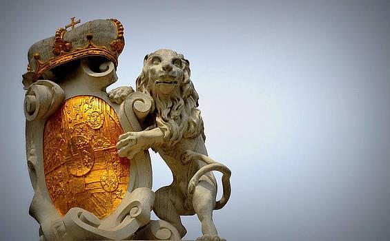 Lion by Emilija Jovanovic