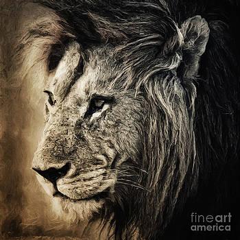 Angela Doelling AD DESIGN Photo and PhotoArt - Lion II