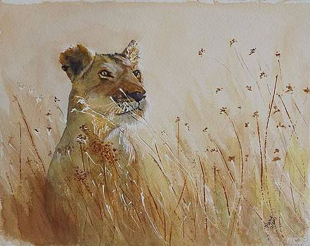 Lion in the Weeds by Maris Sherwood