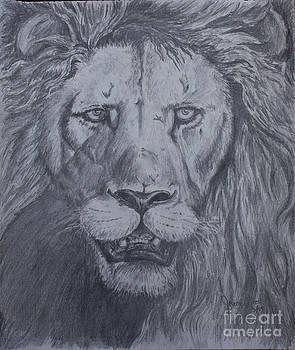 Lion by Jeremy Reed