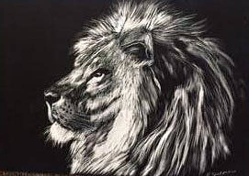 Lion by Roxanne Zusmer