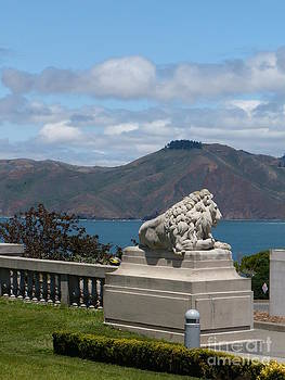 Danielle Groenen - Lion Statue at Legion of Honor Museum