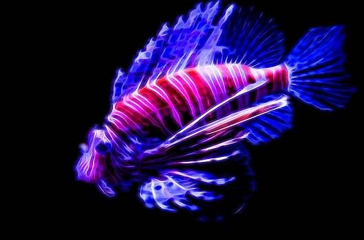 Lionfish ghost by Kayta Kobayashi
