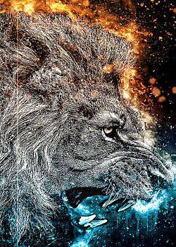 Lion's fury 3 by Renato Armignacco