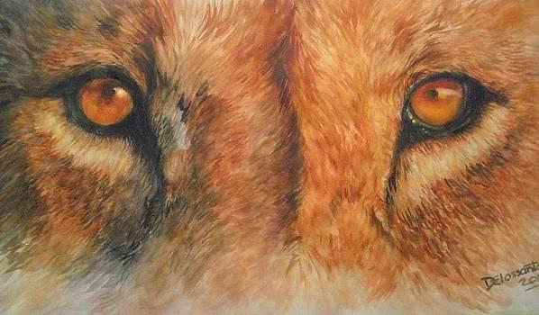 Lion's Gaze by Kristina Delossantos