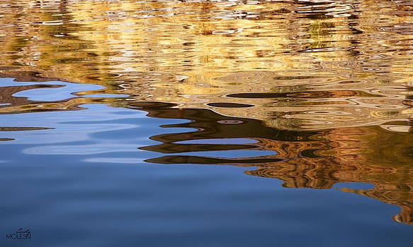 Liquid Gold by Cindy Moleski