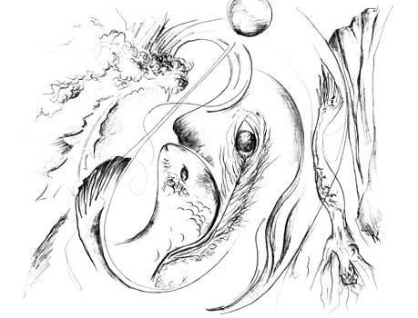 Liquid Picasso by Jessica Snyder