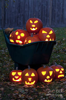 Jim Corwin - Lit Carved Pumpkins In Wheelbarrow