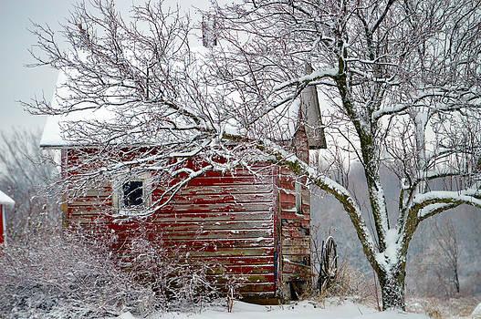 Little Barn by Timothy Thornton