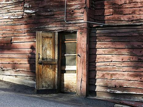 Little Bear Door by Don Barnes