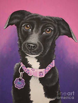 Little black dog by Tish Wynne