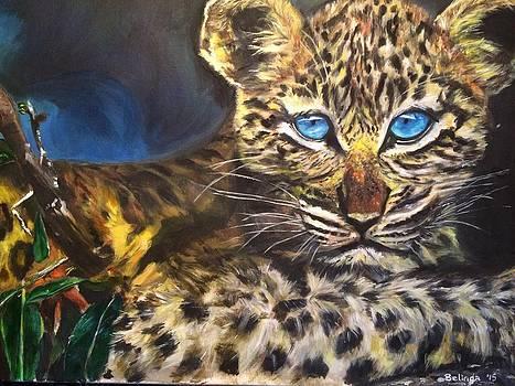 Little Blue Eyes by Belinda Low