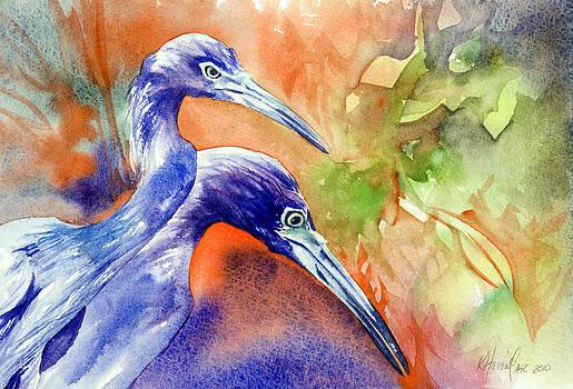 Little Blue Heron Study by Kitty Harvill