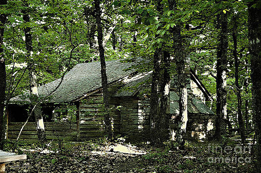 Nancy Stein - Little Cabin In The Woods