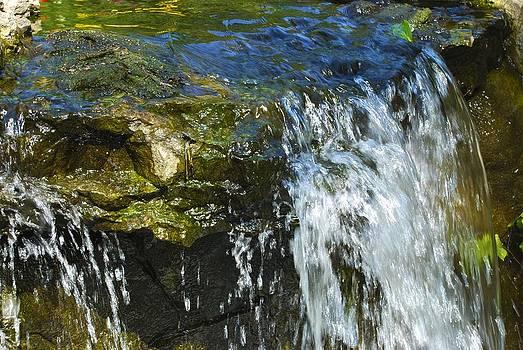 Charlie Brock - Little Falls