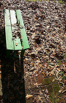 Nina Fosdick - Little Garden Bench in Autumn