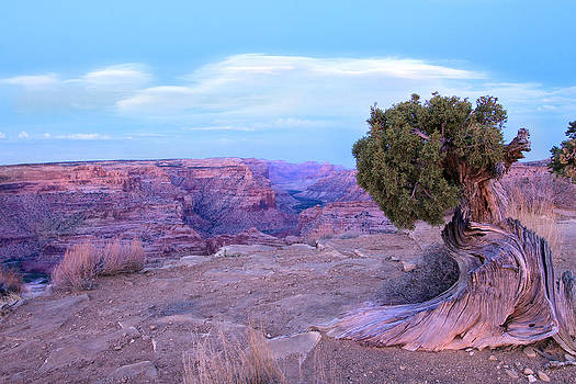 Little Grand Canyon by Darryl Wilkinson