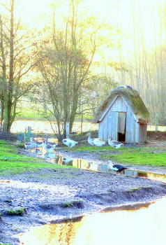 The Little Goose House By The Pond by Hilde Widerberg