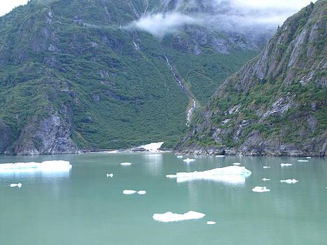 Little Icebergs of Alaska by Barbara Chachibaya