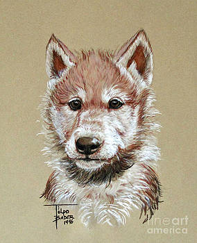 Art By - Ti   Tolpo Bader - Little Lobo