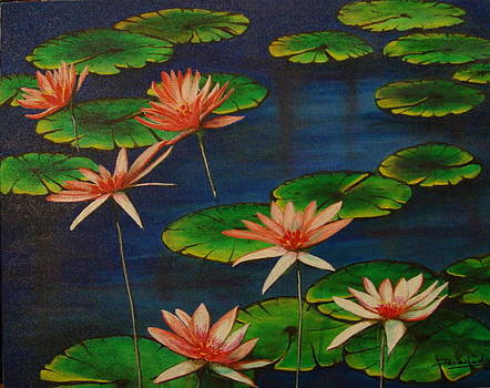 Little pond by Jorge Parellada