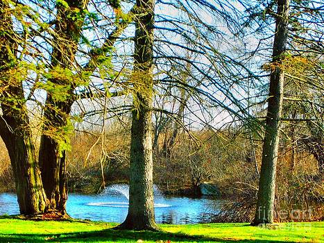 Little Pond by Judy Palkimas