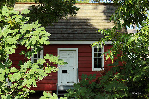 Little Red Building by Carolyn Ricks