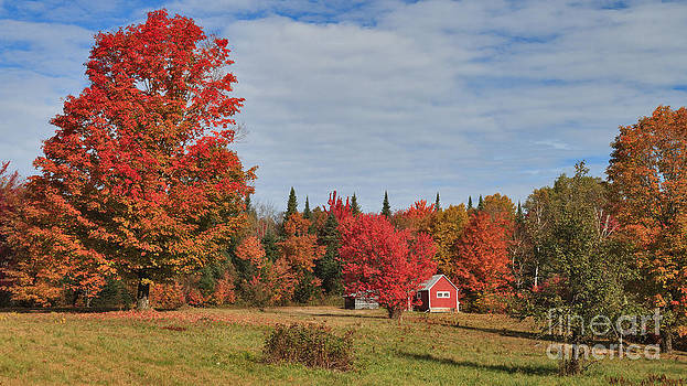 Charles Kozierok - Little Red Cabin on Long Pond Road -- Nearer and Wider