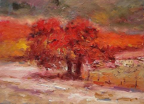 Little red oak tree by R W Goetting
