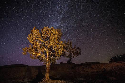 Little Sahara by Dean Chytraus