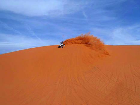 Little Sahara by Patricia Erwin