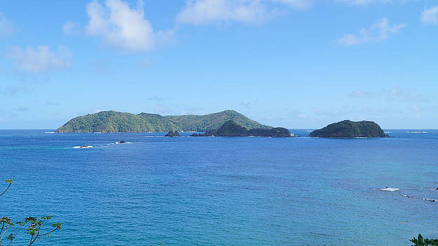 Little Tobago from Big Tobago by Christian Hume