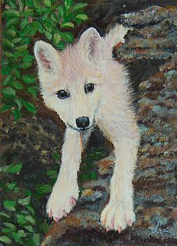 Dee Carpenter - Little Wolf Pup